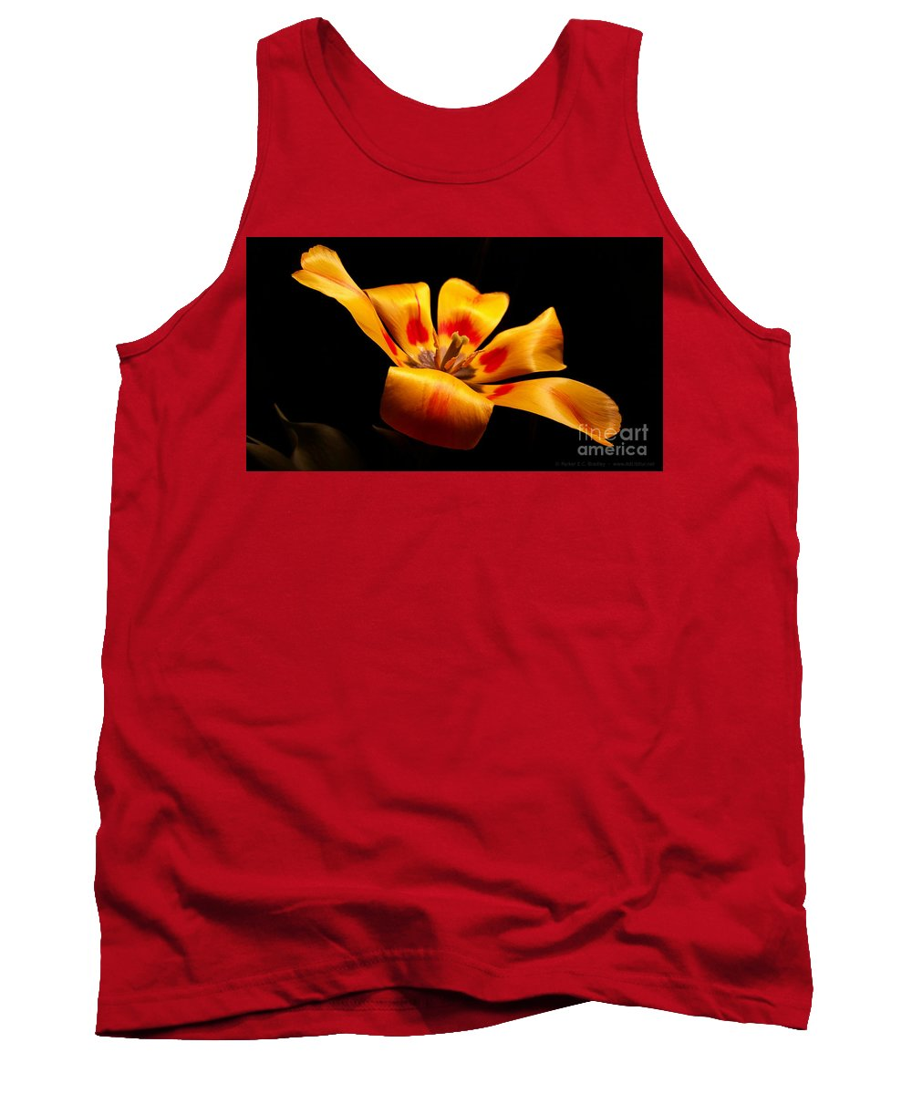 Tulip Tank Top featuring the photograph Red-yellow Tulip 1 by Parker Bradley