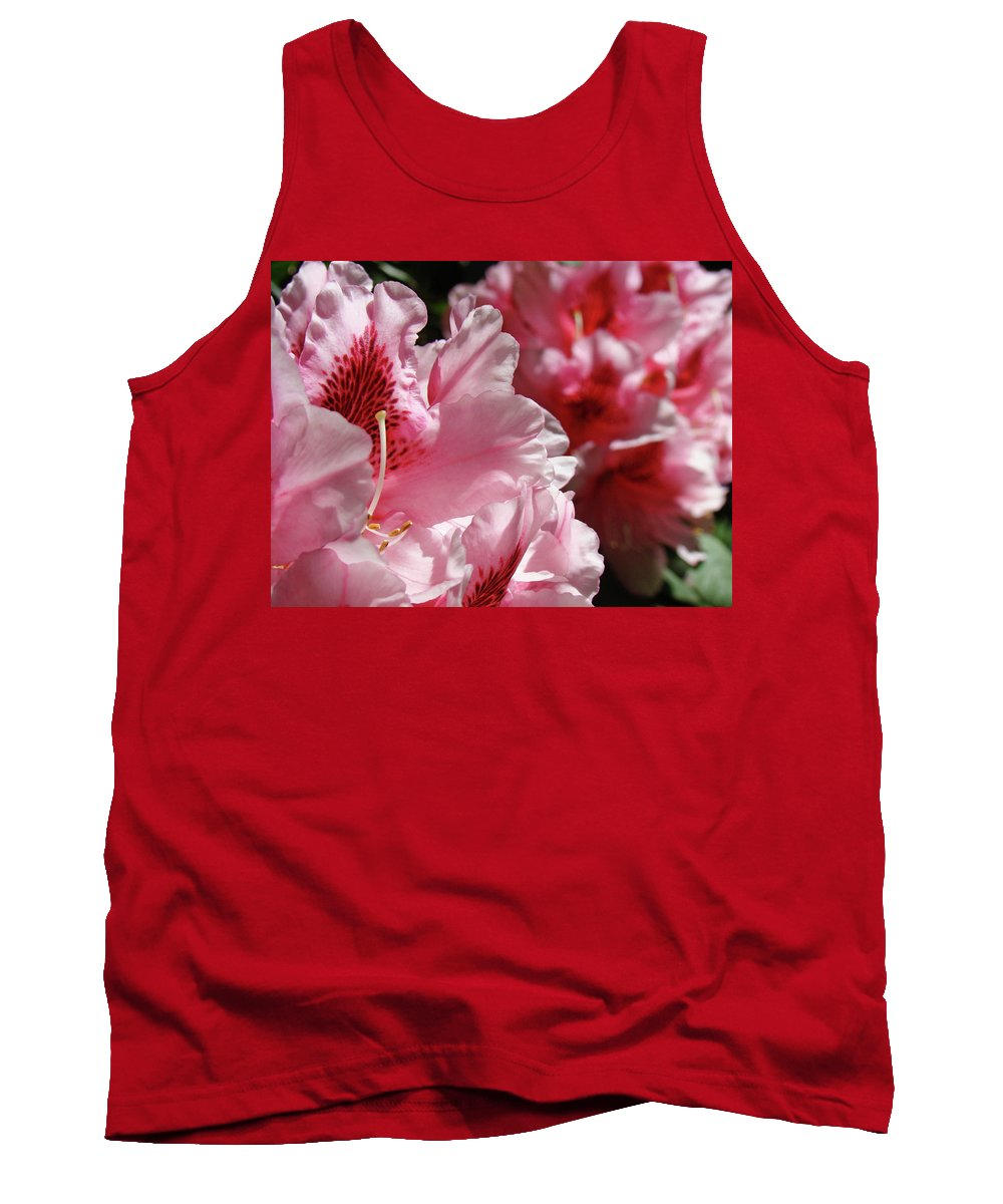 Rhodie Tank Top featuring the photograph Rhododendrons Art Prints Floral Pink Rhodies Canvas Baslee Troutman by Baslee Troutman