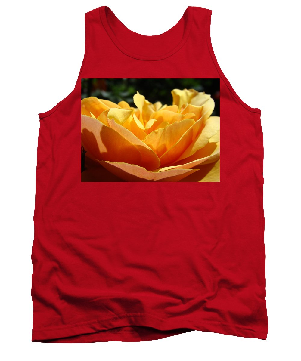 Rose Tank Top featuring the photograph Rose Sunlit Orange Rose Garden 7 Rose Giclee Art Prints Baslee Troutman by Baslee Troutman