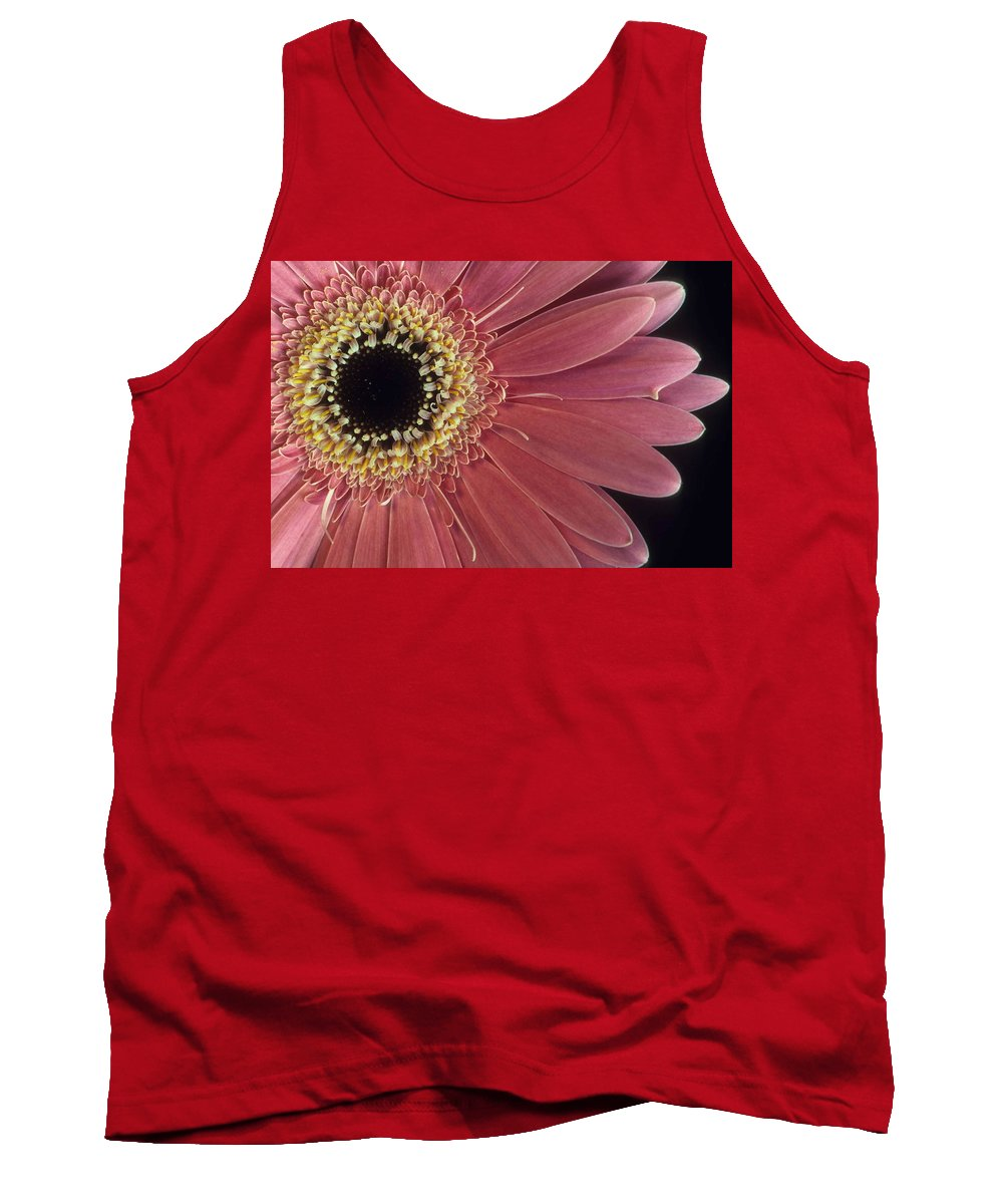 Salmon Gerber Daisy Tank Top featuring the photograph Salmon Gerber Daisy by Laurie Paci