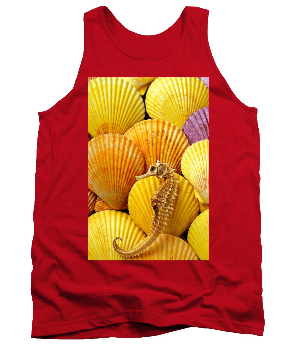 Seahorse Tank Top featuring the photograph Sea Horse And Sea Shells by Garry Gay