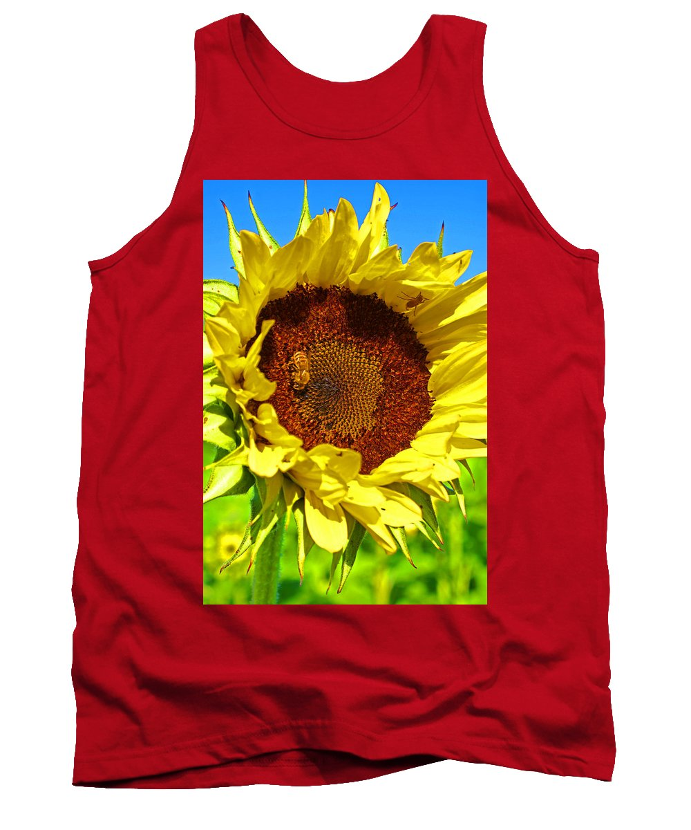 Pastoral Tank Top featuring the photograph Sunflower And Bee by Heather Coen