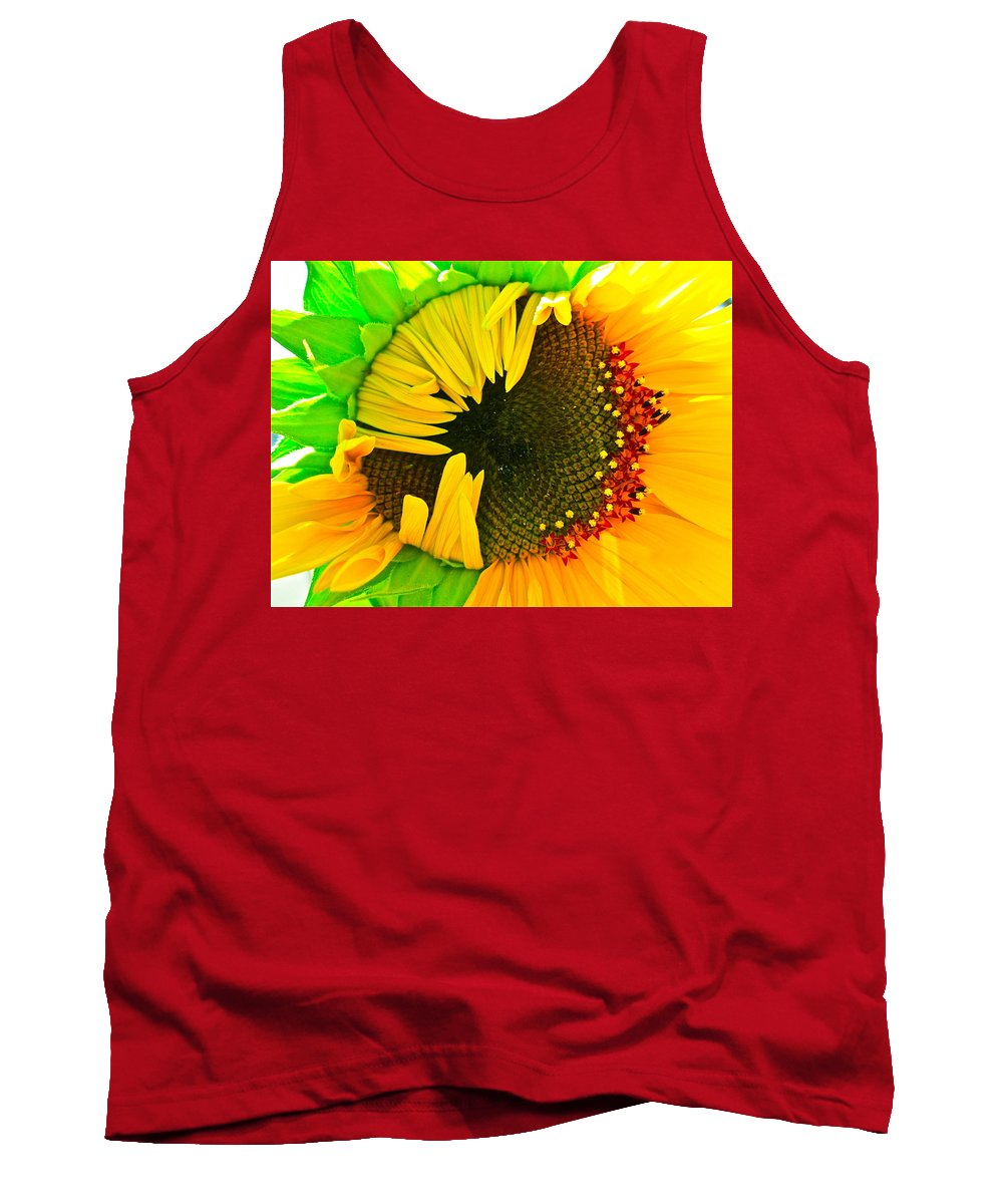 Sunflower Photograph Tank Top featuring the photograph Sunny by Gwyn Newcombe