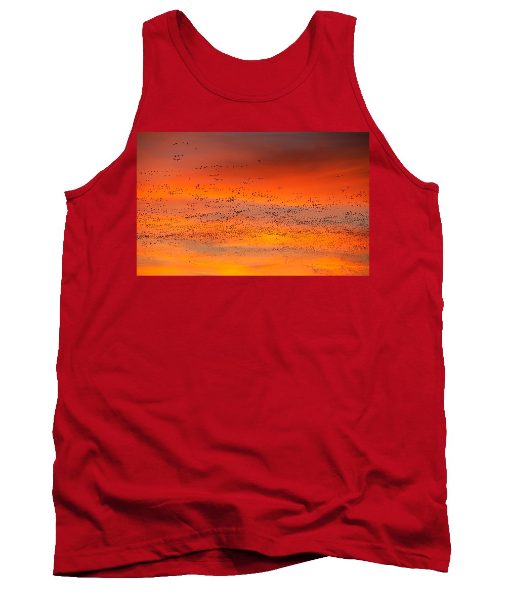 Migration Tank Top featuring the photograph Sunrise Migration by Randall Ingalls