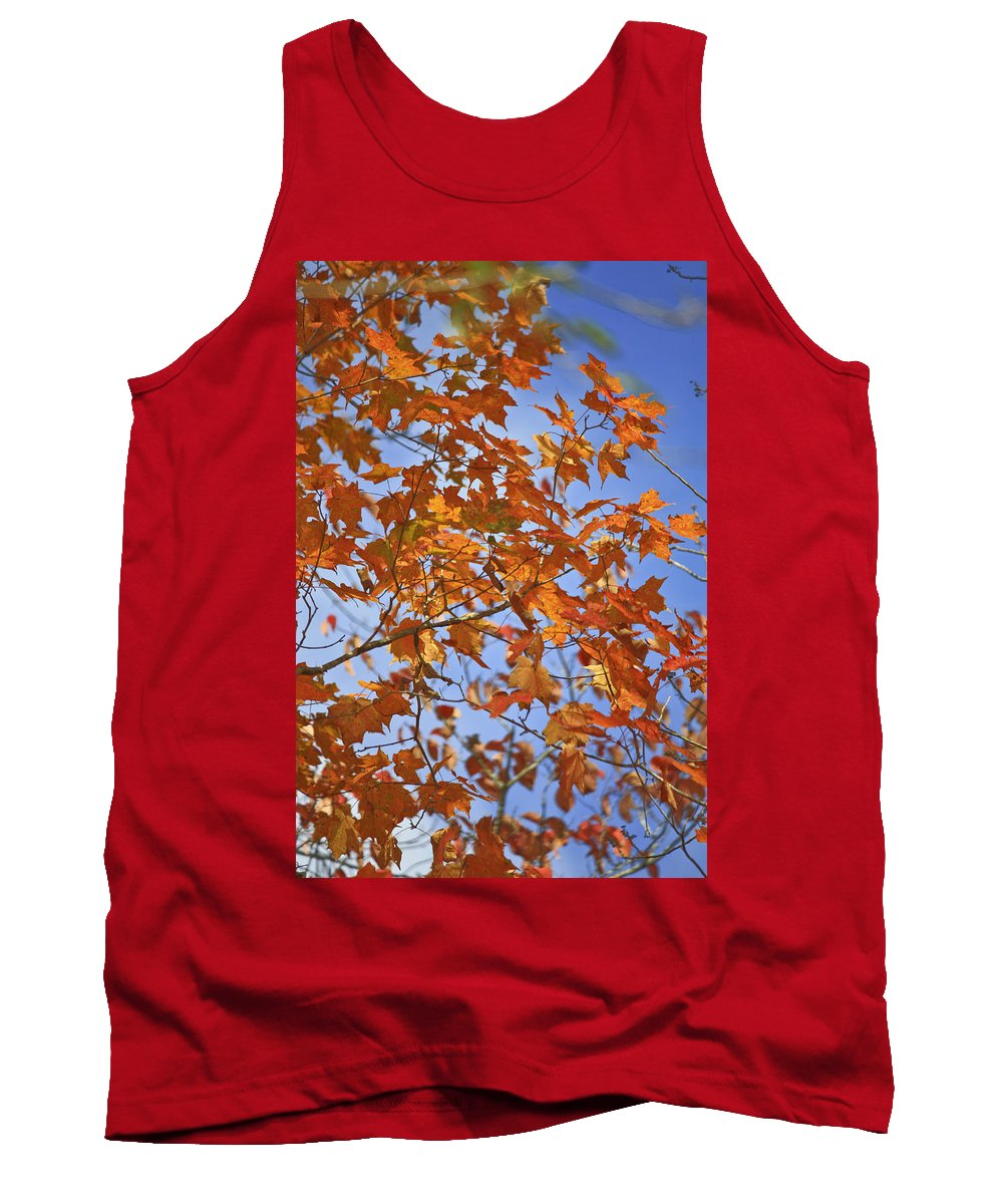 Fall Tank Top featuring the photograph The Color Of Fall 2 by Teresa Mucha