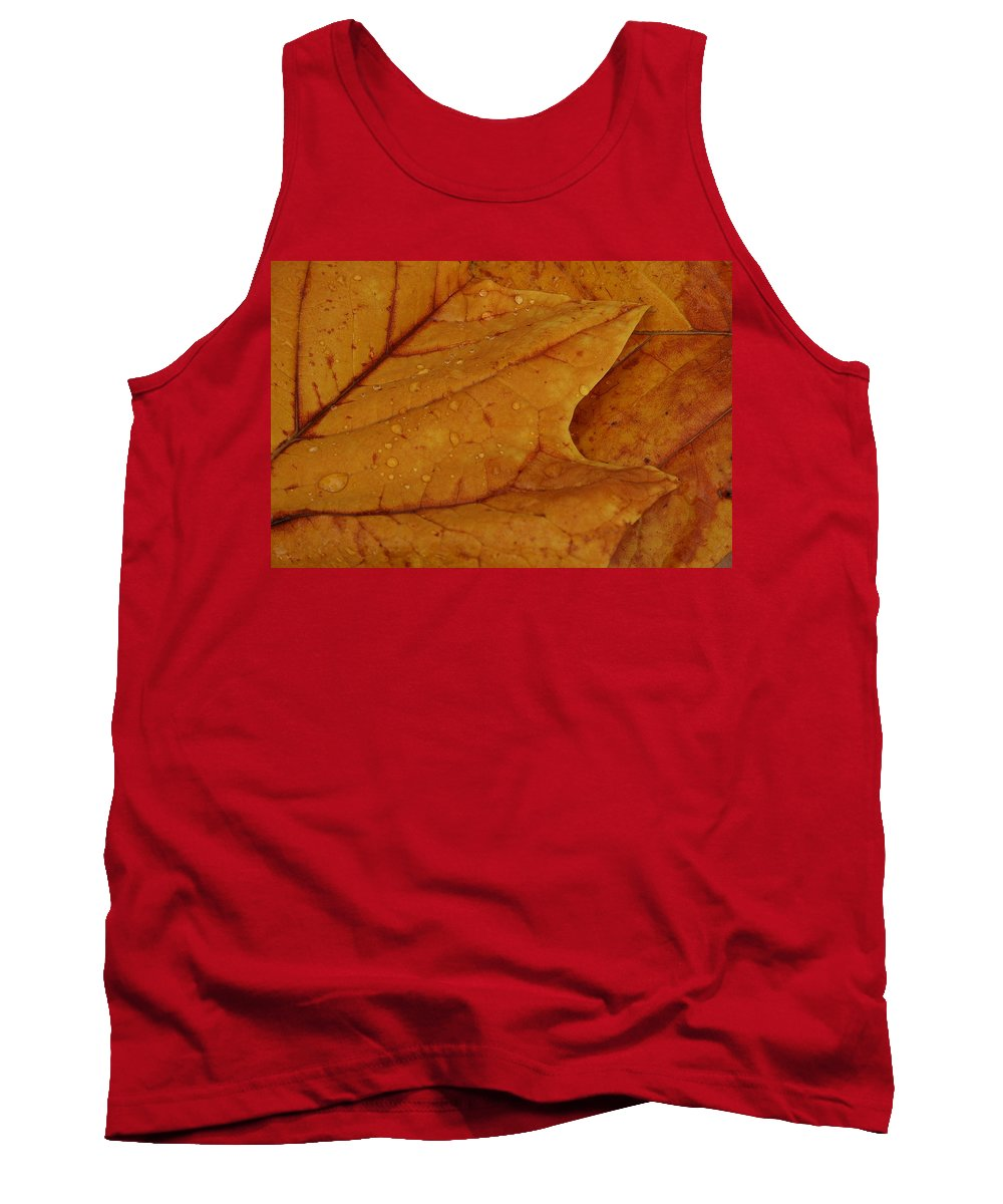 Leaves Tank Top featuring the photograph The Golden Time by Lyle Hatch