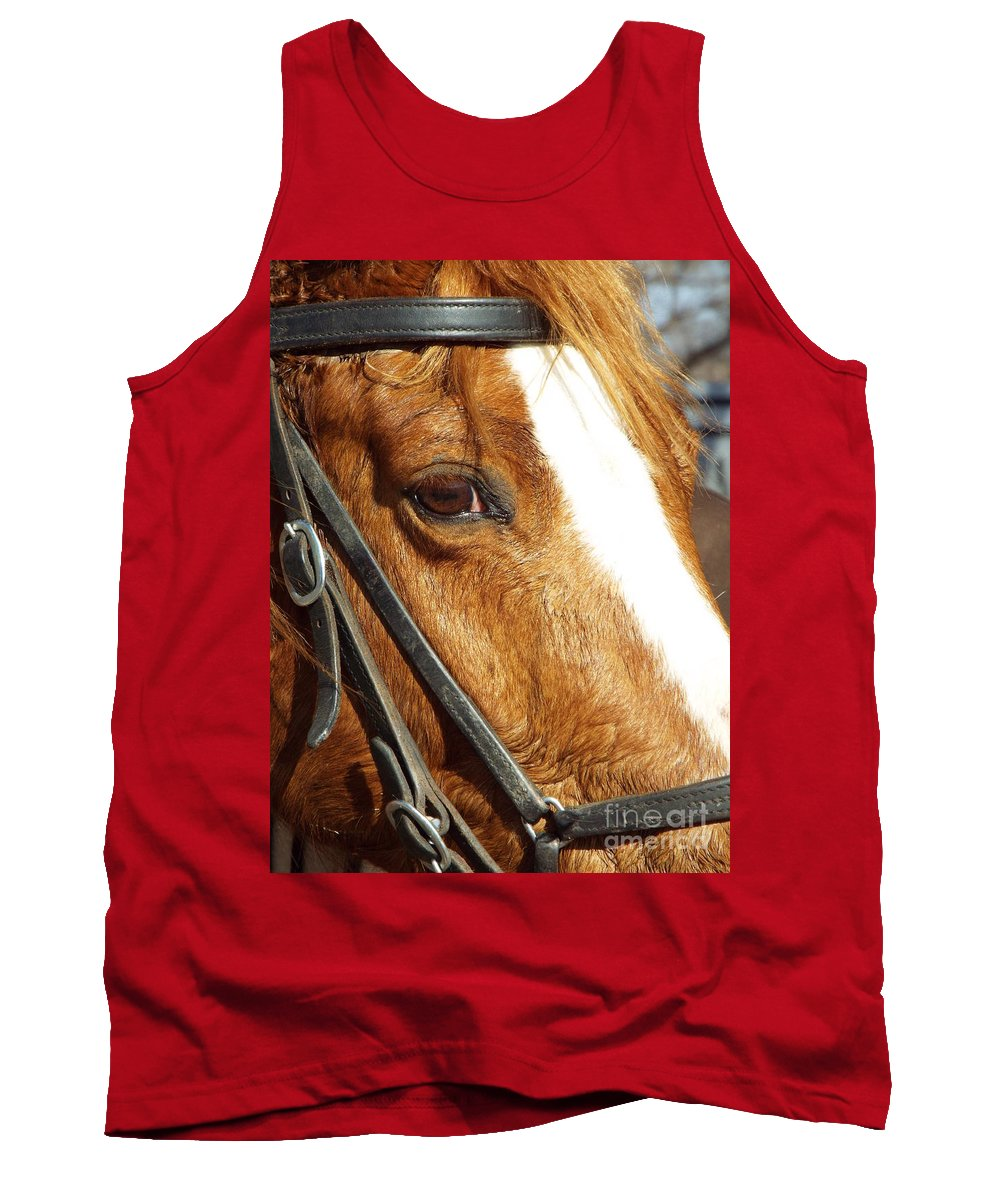 Horse Tank Top featuring the photograph Those Big Brown Eyes by Caryl J Bohn