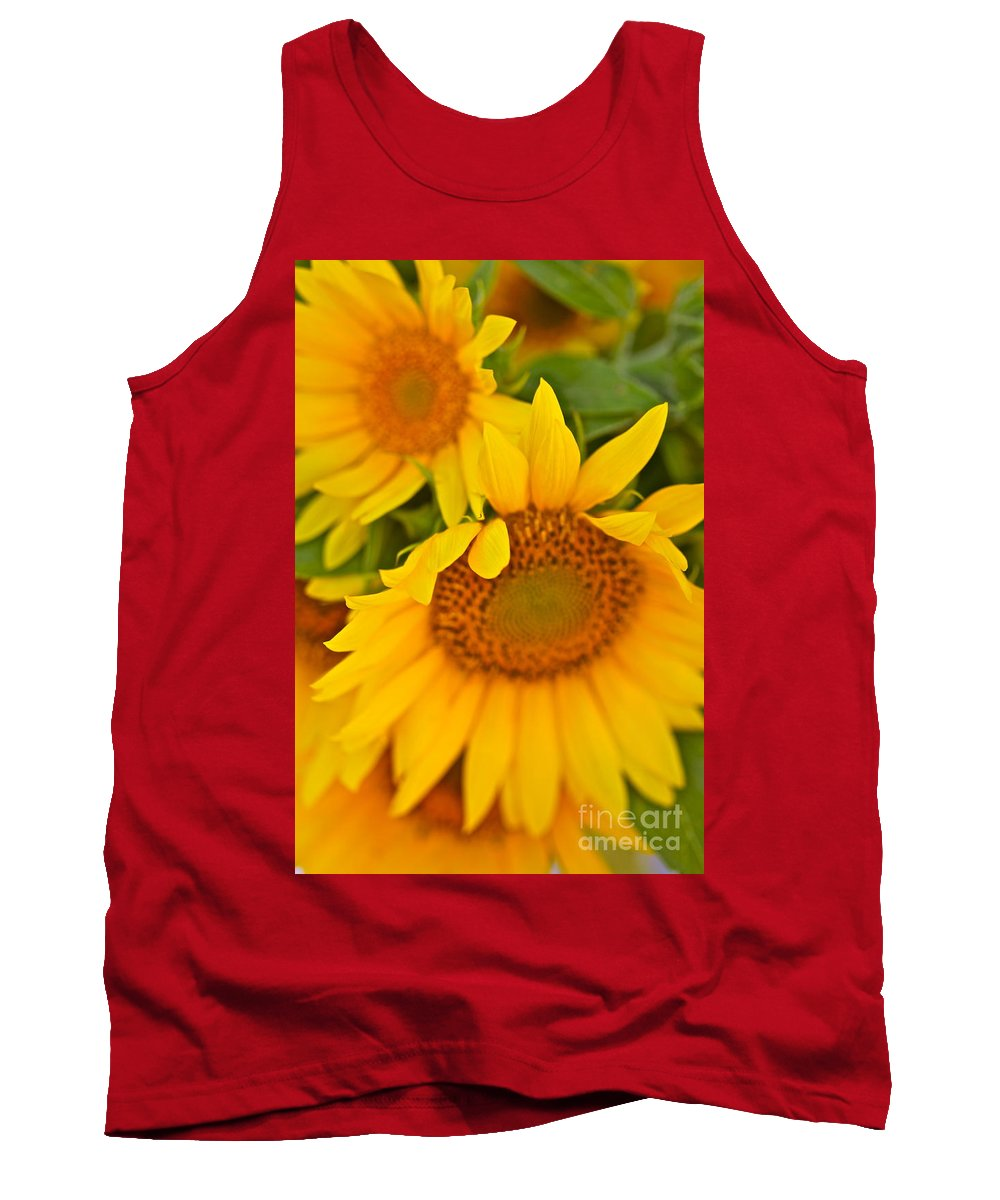 Yellow Tank Top featuring the photograph Three Sunflowers by Nadine Rippelmeyer