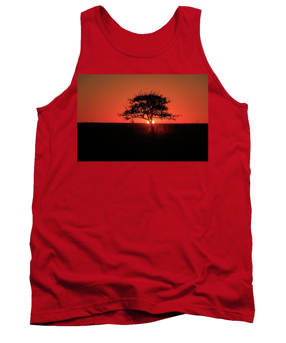 Beauty Tank Top featuring the photograph Tree A Glow by The Bohemian Lens LLC