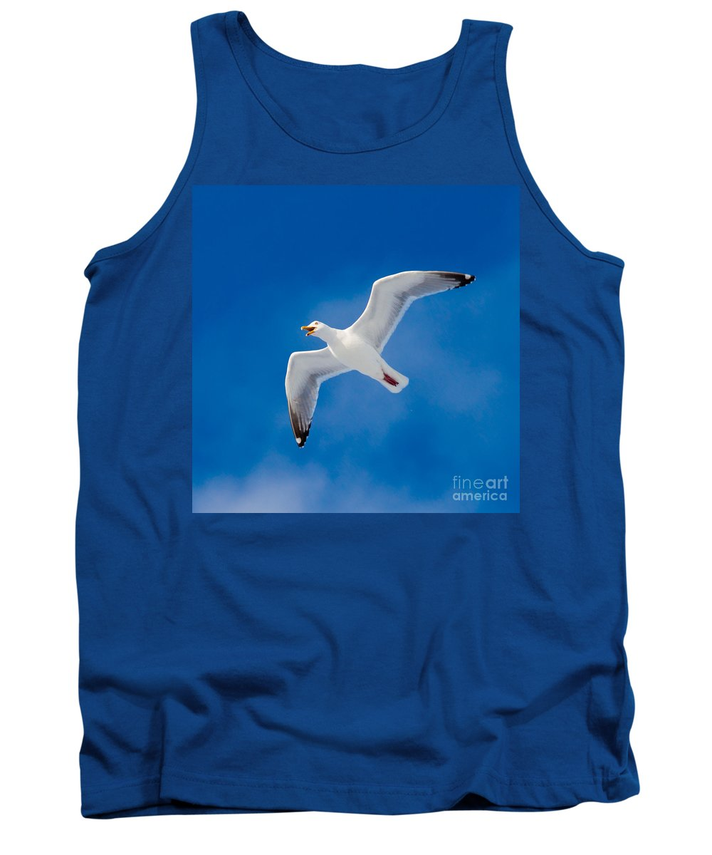 Larus Tank Top featuring the photograph Calling Herring Gull Flying In Blue Sky by Stephan Pietzko