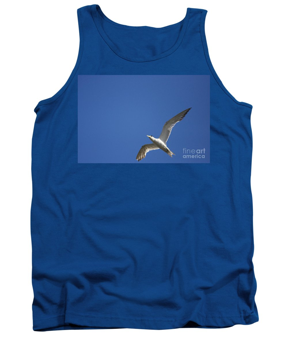 Flying Tank Top featuring the photograph Flying Crested Tern by Jorgo Photography - Wall Art Gallery
