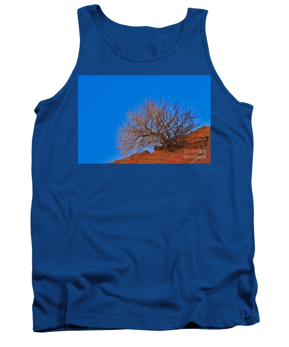 Arizona Tank Top featuring the photograph Slickrock Formation by David Davis