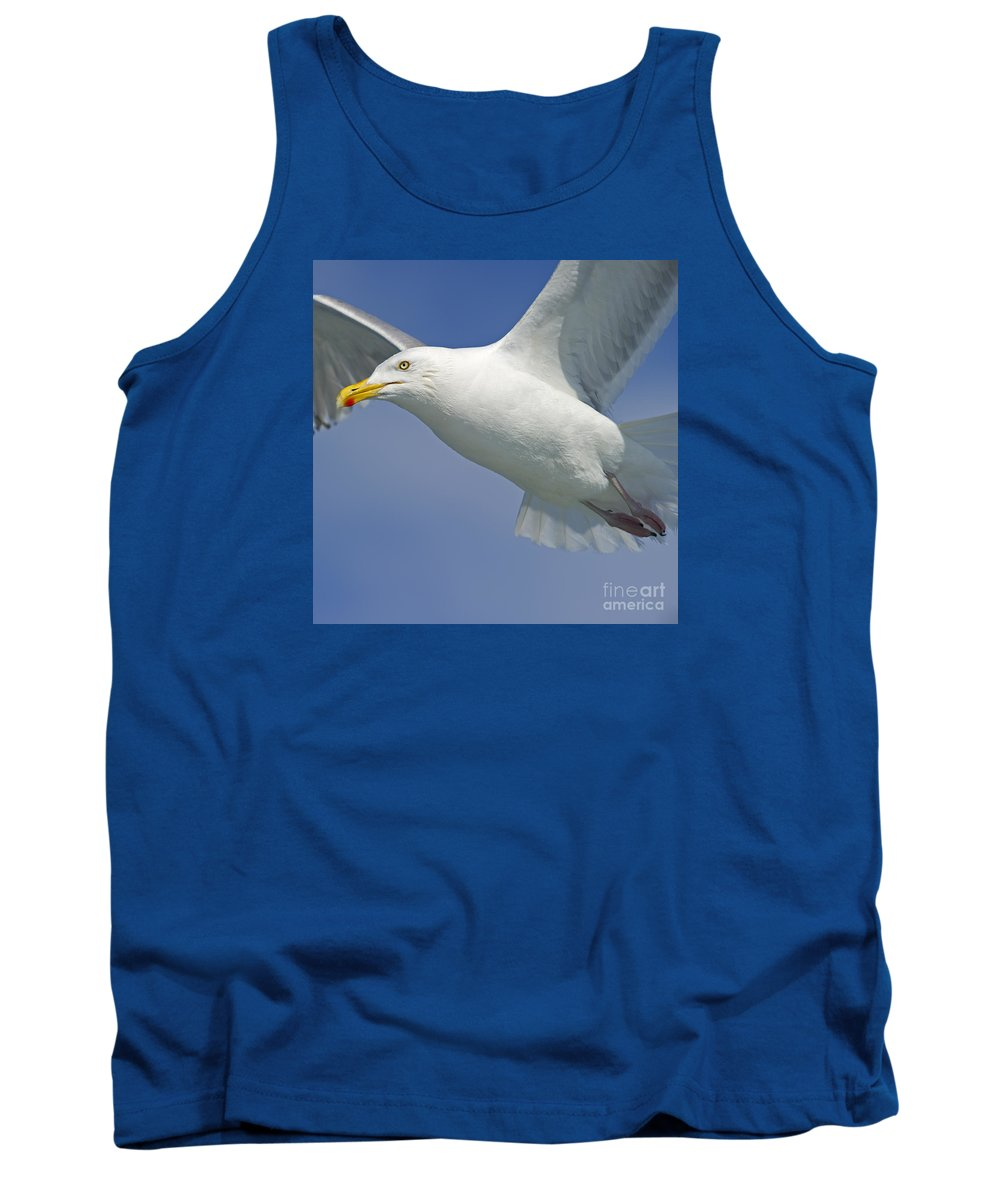 Festblues Tank Top featuring the photograph Up Close And Personal... by Nina Stavlund
