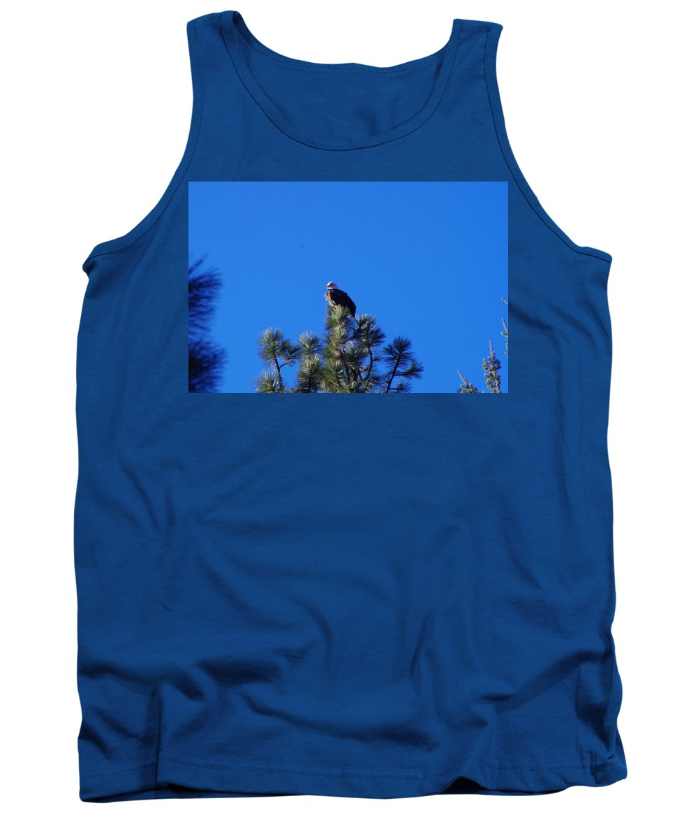 Bald Eagle Tank Top featuring the photograph Bald Eagle by Mike Wheeler