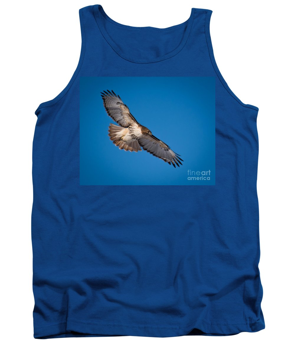 Red-tailed Hawk Tank Top featuring the photograph Red-tailed Hawk by Ronald Grogan