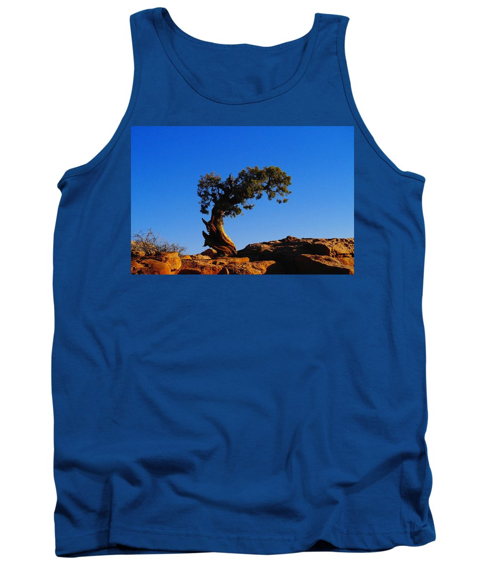 Trees Tank Top featuring the photograph Bent By The Wind by Jeff Swan