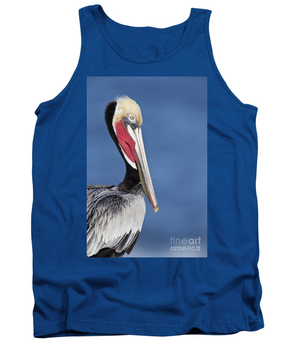 Pelican Tank Top featuring the photograph Brown Pelican Portrait by Bryan Keil