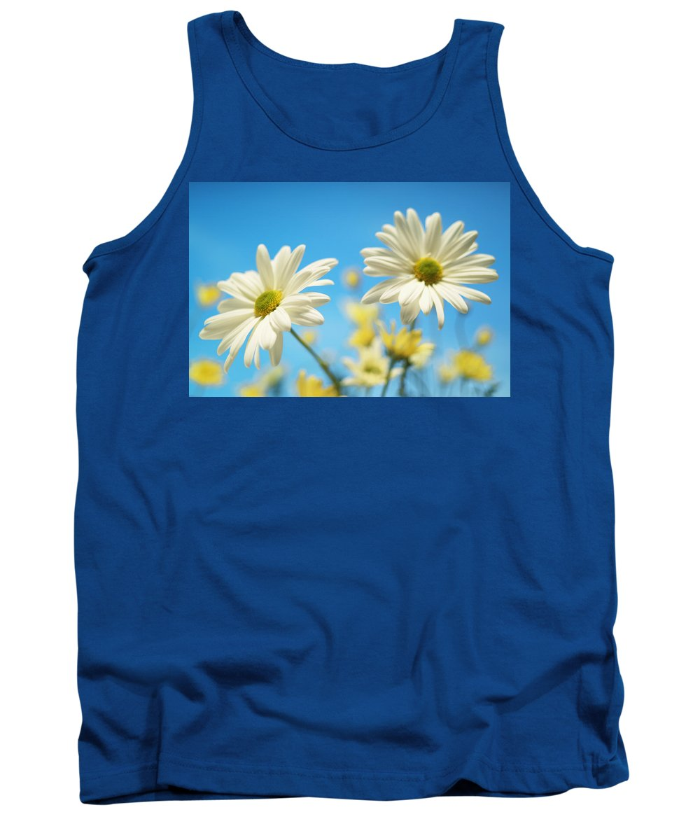 Blue Background Tank Top featuring the photograph Close-up Of Daisies Against A Blue by Bruno Crescia