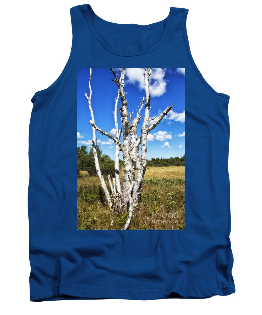 Timothy Hacker Tank Top featuring the photograph Dead Trees by Timothy Hacker