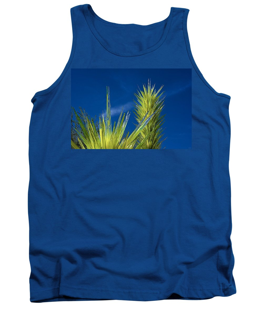Glass Tank Top featuring the photograph Desert Towers - Detail by Barbara Zahno