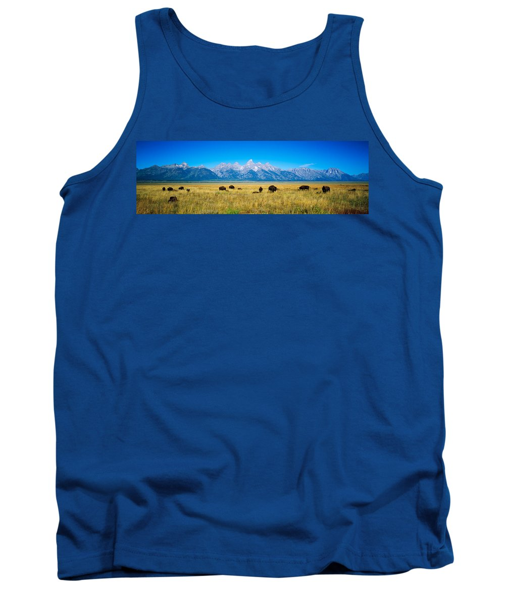 Photography Tank Top featuring the photograph Field Of Bison With Mountains by Panoramic Images