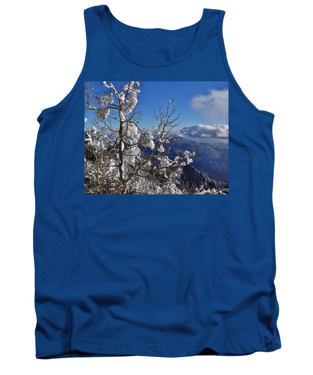 Winter Scene Tank Top featuring the photograph Flocked Pinon by Lois  Rivera