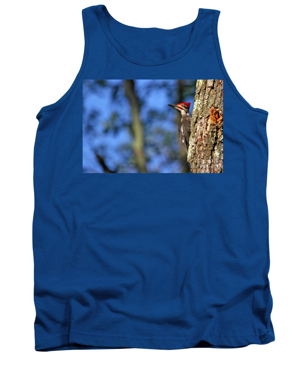 Pileated Woodpecker Tank Top featuring the photograph Pileated Series #14 by James F Towne