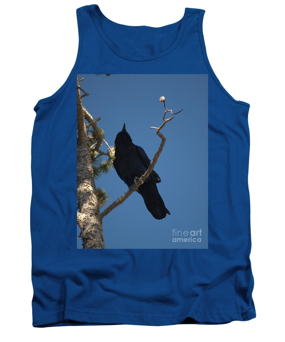 Raven Tank Top featuring the photograph Raven by Jacklyn Duryea Fraizer