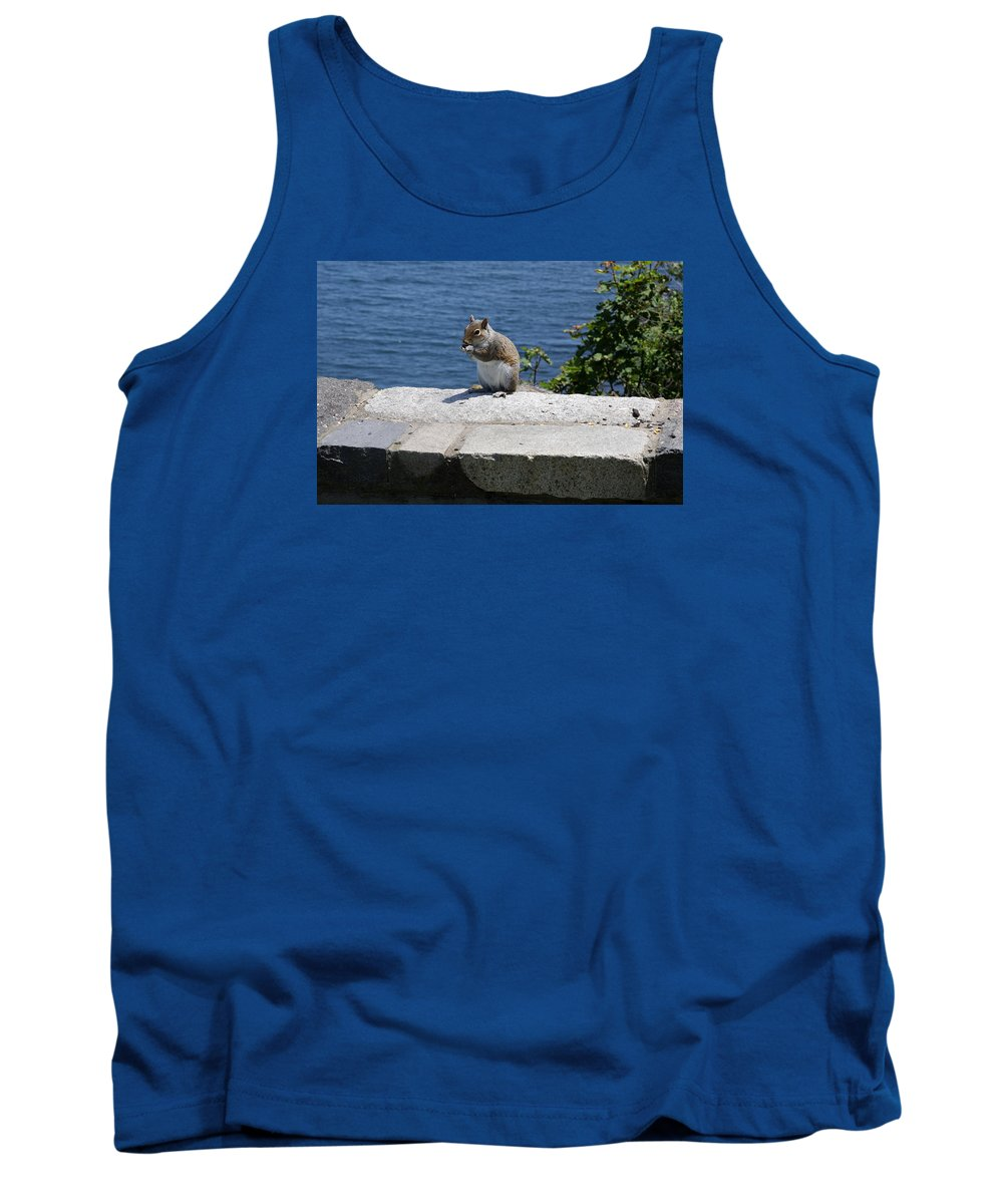Squirrel Tank Top featuring the photograph Rhode Island Squirrel by Christiane Schulze Art And Photography