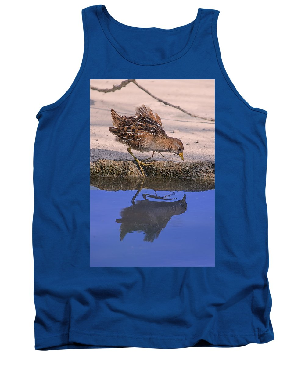 Bird Tank Top featuring the photograph Shoreline Sora Reflection Beauty by Leslie Reagan - Joy To The Wild Photos