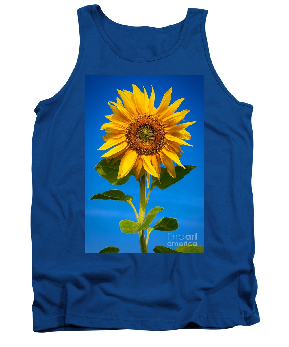 Outdoor Tank Top featuring the photograph Sunflower by Carsten Reisinger