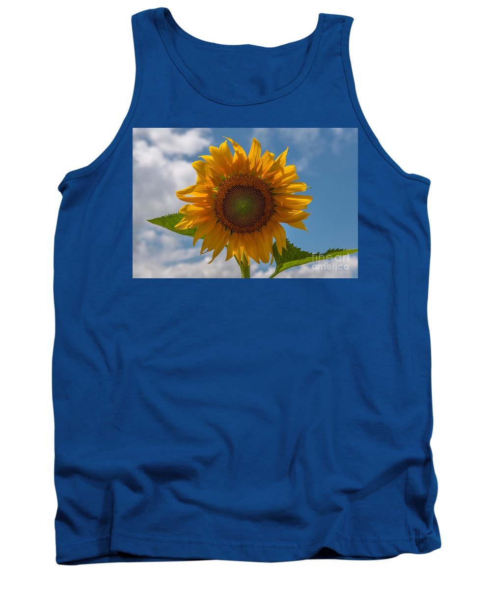 Sunflower Tank Top featuring the photograph Sunflower Power by Dale Powell