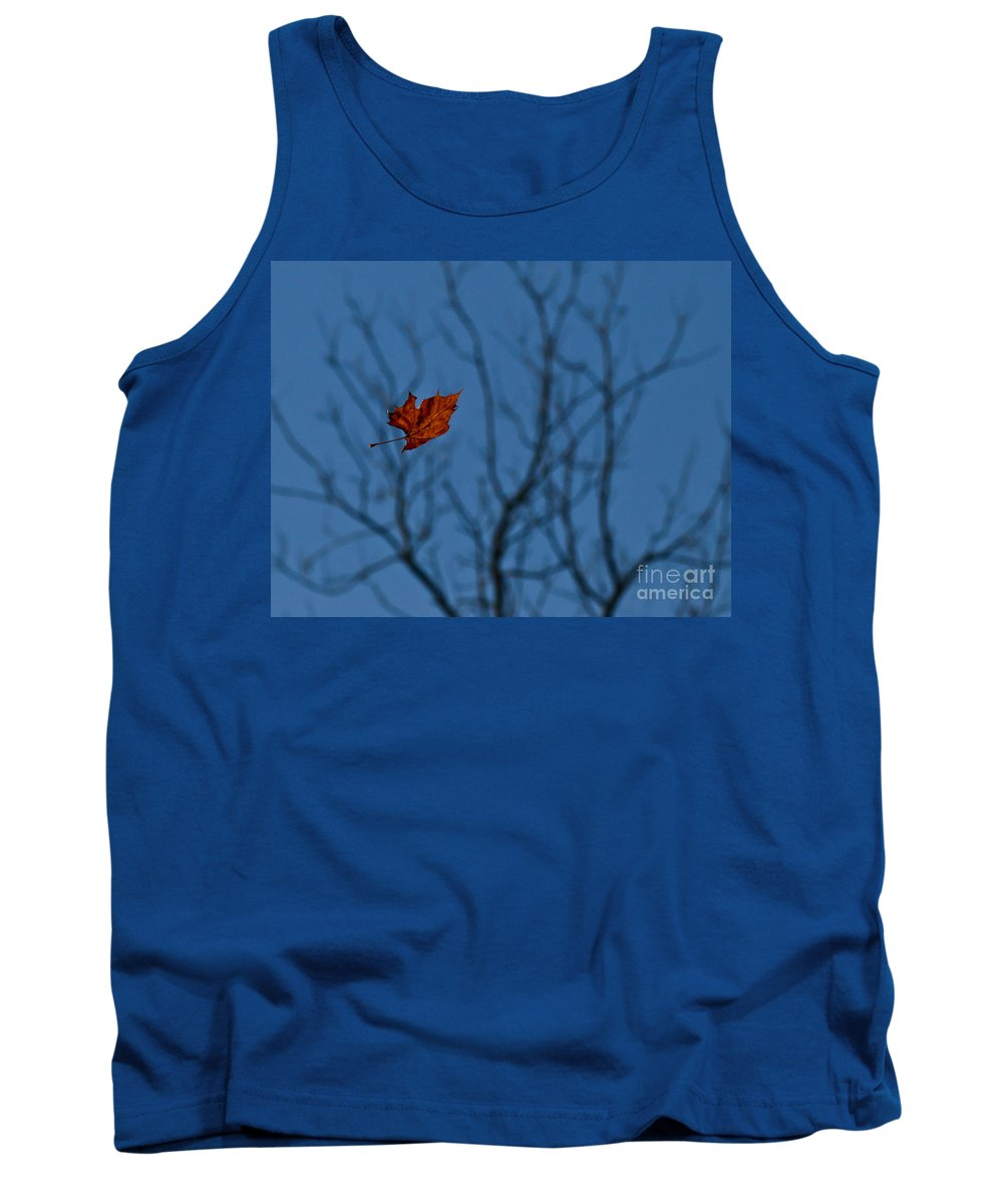 Leaf Tank Top featuring the photograph The Last Leaf Fell by Douglas Stucky