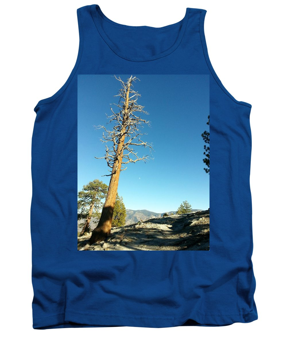 Tree Tank Top featuring the photograph The Lone Tree by Cathy Smith