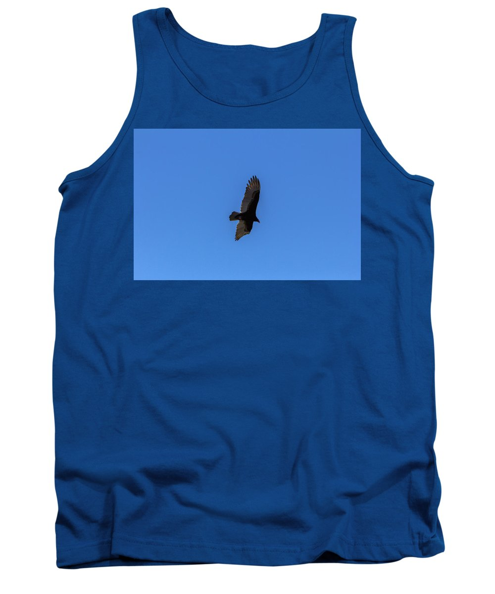 Vulture Tank Top featuring the photograph Turkey Vulture 1 by Thomas Sellberg