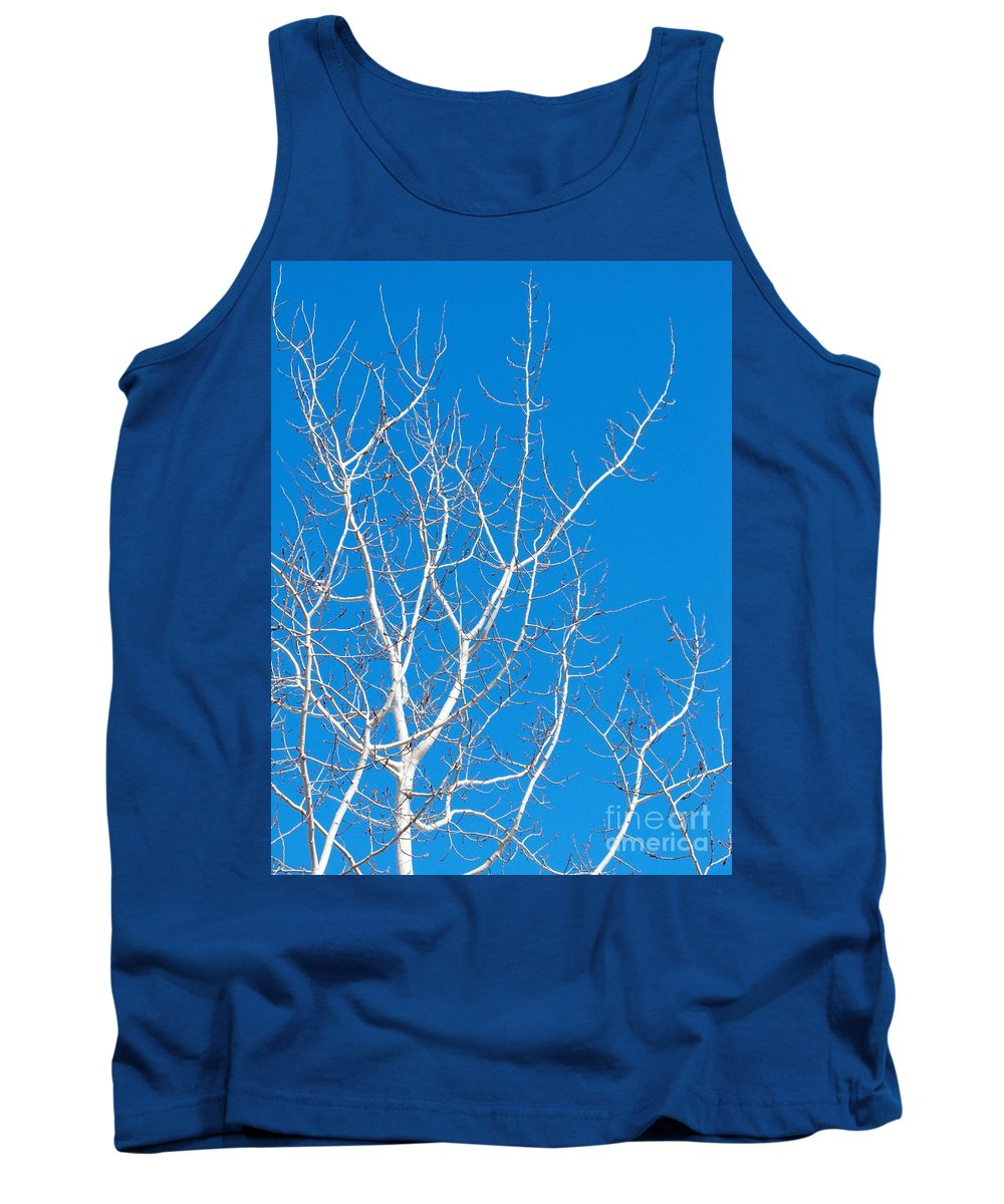 Winter Tank Top featuring the photograph Winter by Ann Horn