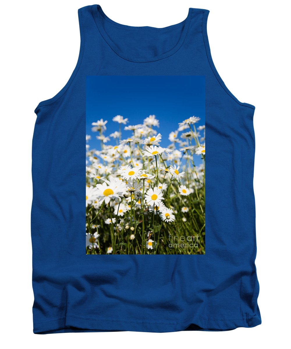Daisy Tank Top featuring the photograph Daisies by Kati Finell