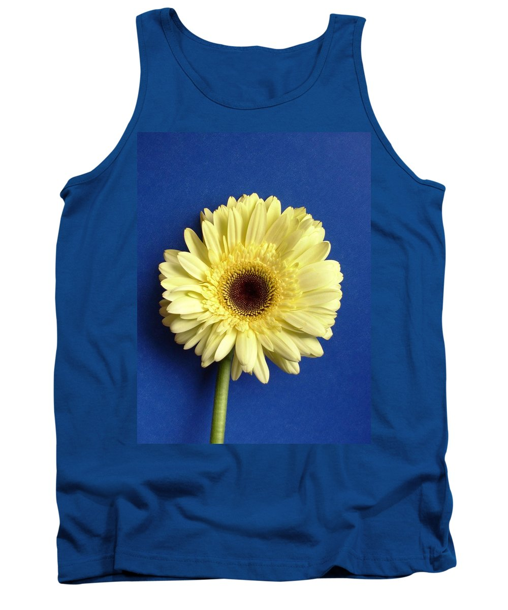 Gerbera Photographs Tank Top featuring the photograph 7721c by Kimberlie Gerner