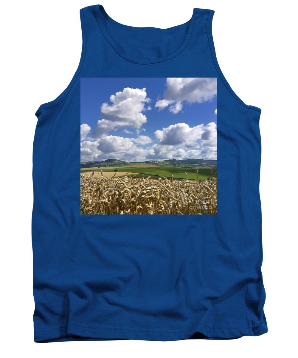Agriculture Tank Top featuring the photograph A Field Of Barley . Auvergne. France by Bernard Jaubert