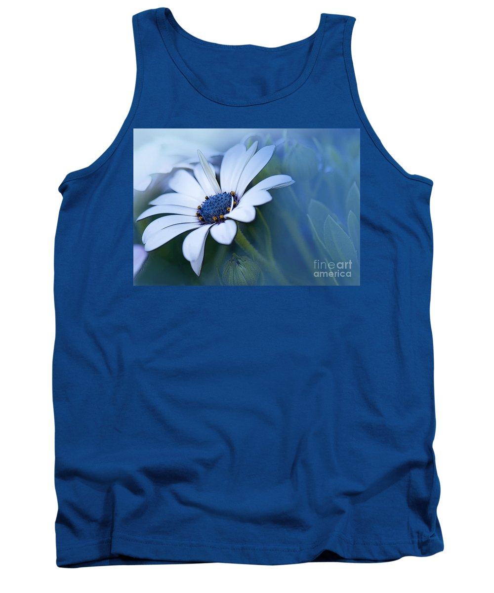 Daisy Tank Top featuring the photograph Blue Eyed African Daisy by Betty LaRue