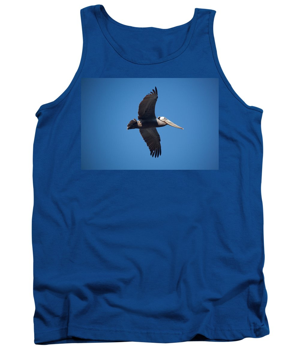 Pelican Tank Top featuring the photograph flying Pelican by Ralf Kaiser