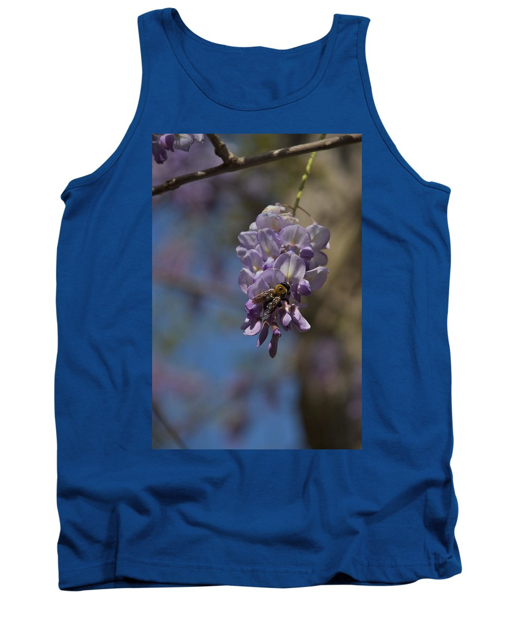 Baily School Tank Top featuring the photograph Hunger by Joseph Yarbrough