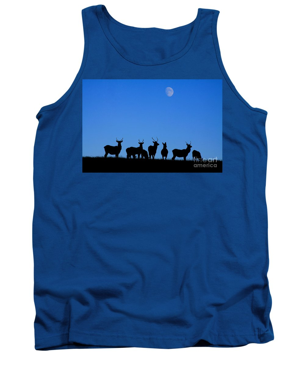 Elk Tank Top featuring the photograph Moonlighting by Alyce Taylor