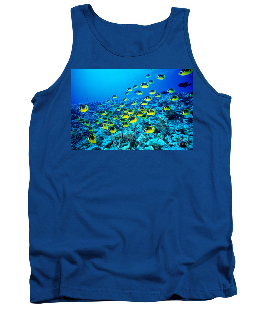 Animal Art Tank Top featuring the photograph Schooling Raccoon by Dave Fleetham - Printscapes