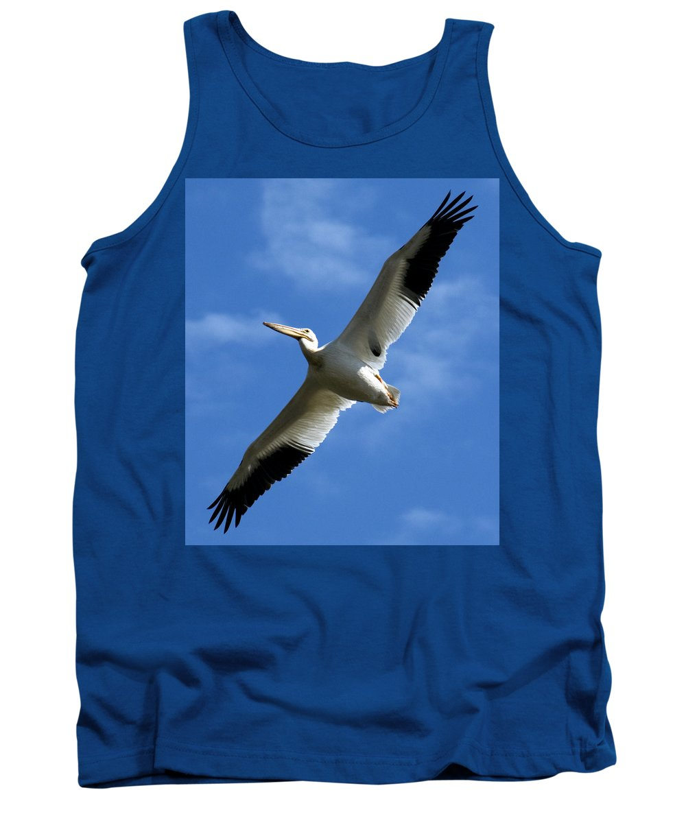 Bird Tank Top featuring the photograph American White Pelican Wings by Marilyn Hunt