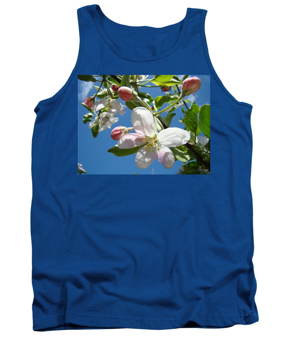 Apple Tank Top featuring the photograph Apple Blossoms Art Prints Blue Sky Spring Baslee Troutman by Baslee Troutman