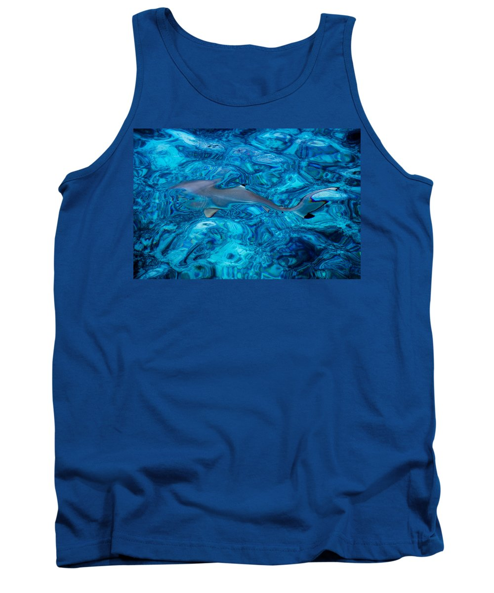 Nature Tank Top featuring the photograph Baby Shark In The Turquoise Water. Production By Nature by Jenny Rainbow
