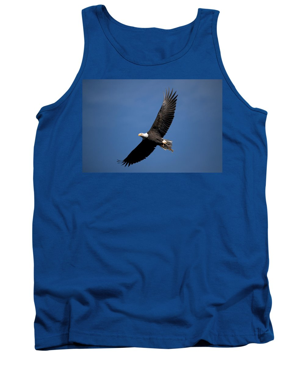 Bald Eagle Tank Top featuring the photograph Bald Eagle I by Randall Ingalls