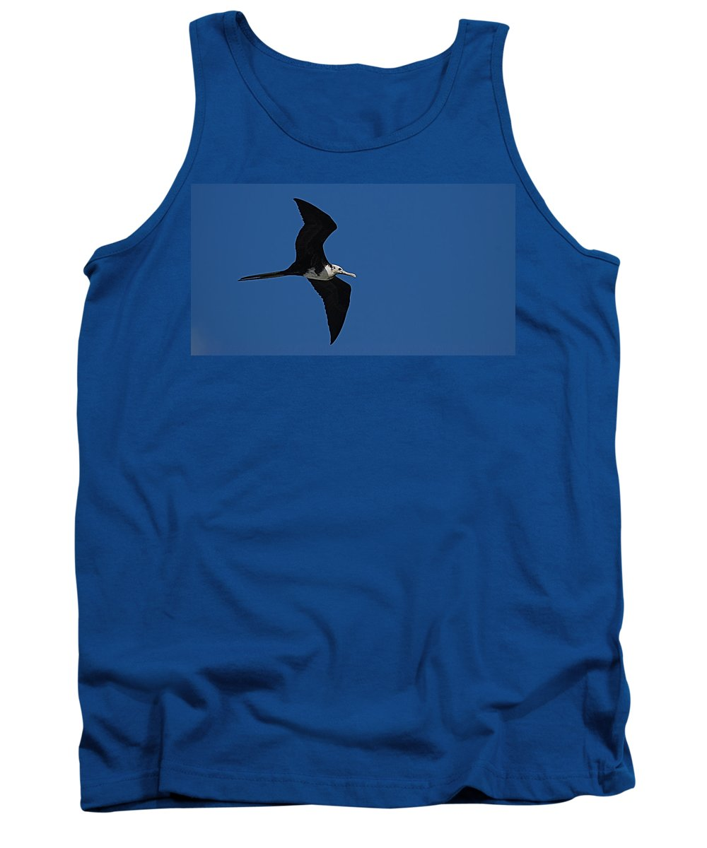Bird Tank Top featuring the photograph Bird by Galeria Trompiz