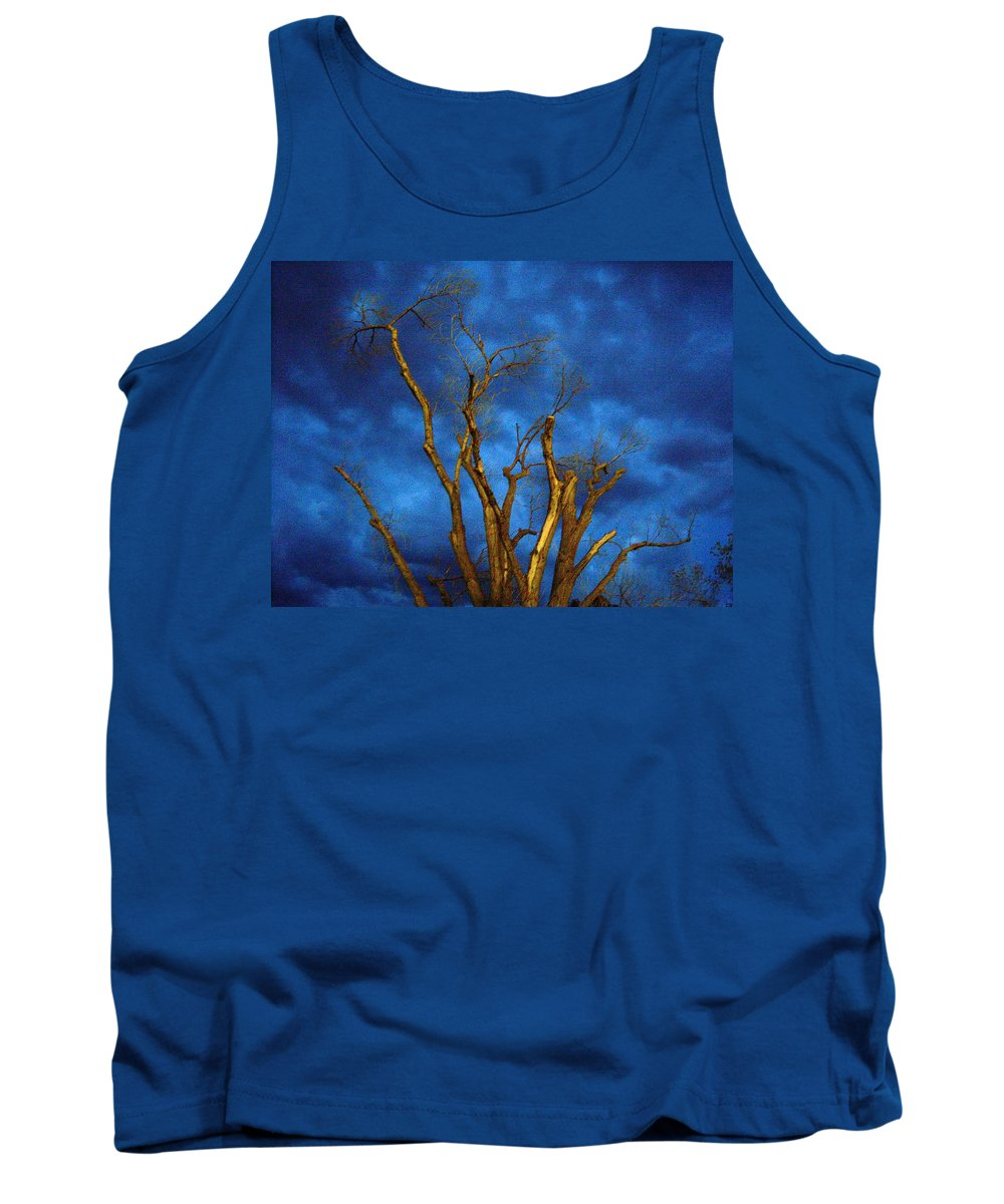 Blue Tank Top featuring the photograph Branches Against Night Sky H by Heather Kirk